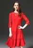 Picture of Lotus bottom lace sleeve dress