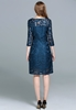 Picture of 3/4 Sleeve Lace Plus Size Party Dress