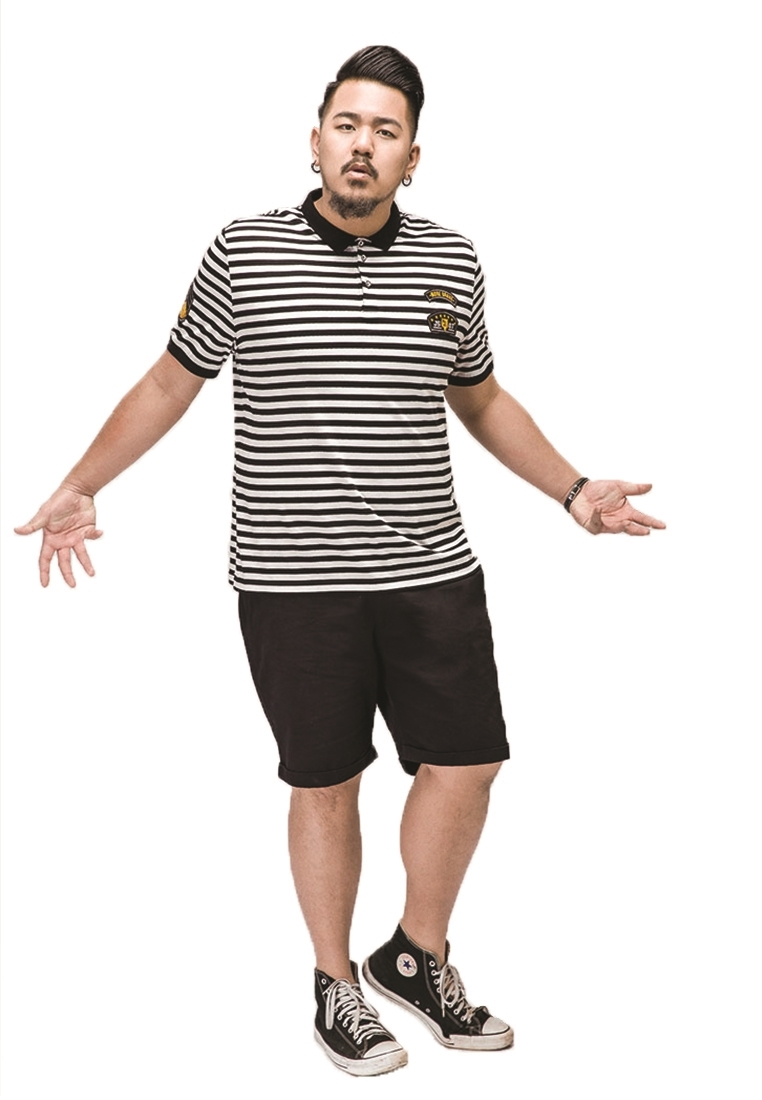 Picture of Stripe Plus Size Men's POLO Shirt