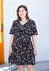 Picture of Floral Plus Size Dress