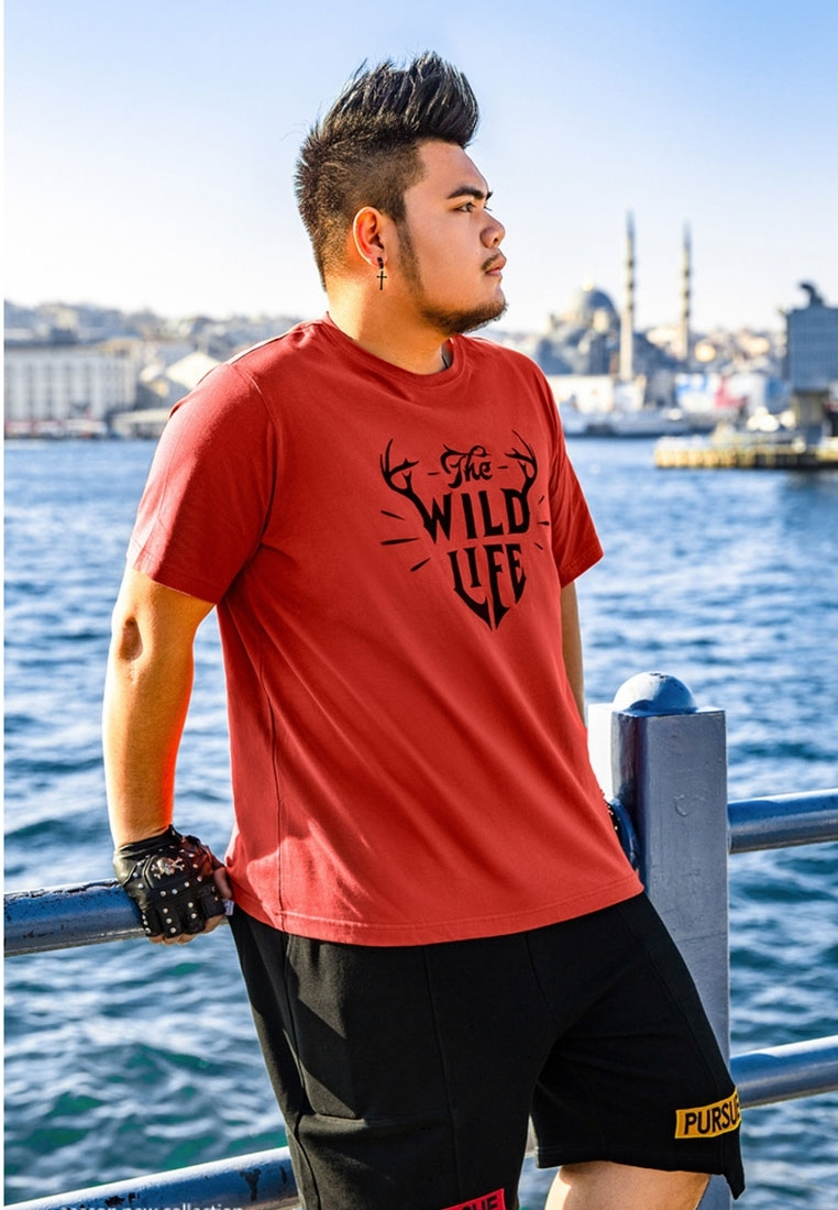 Picture of Letter Print Plus Size Men's Tee
