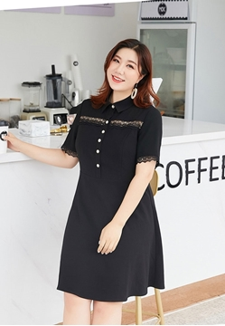 Picture of Lace Border Short Sleeve Plus Size Dress
