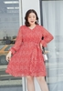 Picture of Plus Size Chiffon Long Sleeve Dress