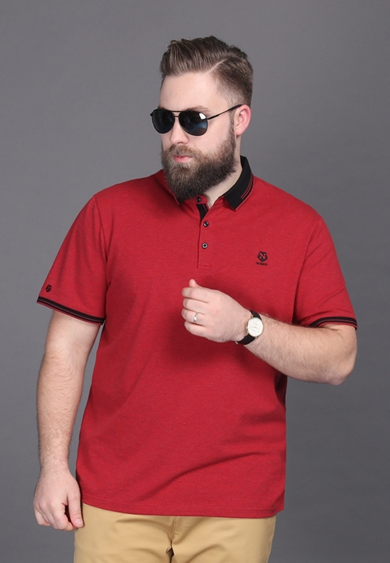 Picture of Short Sleeve Plus Size Men POLO With Embroidery