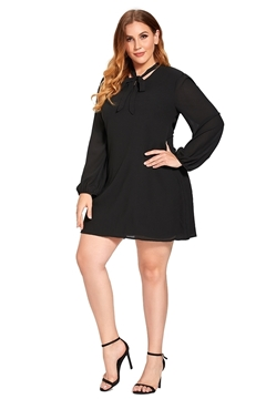 Picture of Puffed Sleeve Plus size A Line Tunic/Dress